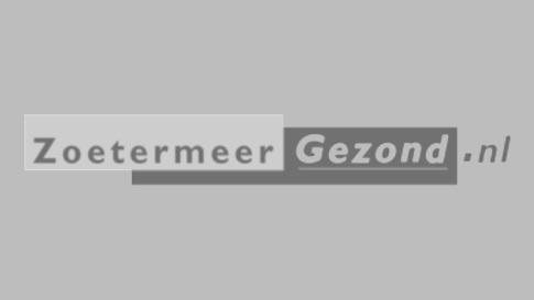 SGZ Grey